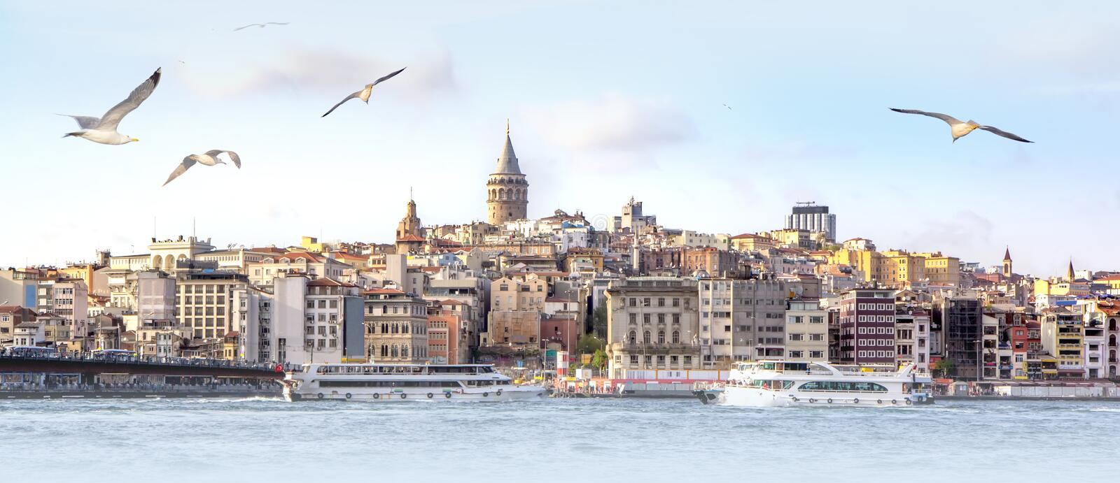 Panorama of Istanbul with Galata Tower at skyline and seagulls over the sea, wide landscape of Golden Horn, travel background for royalty free stock image