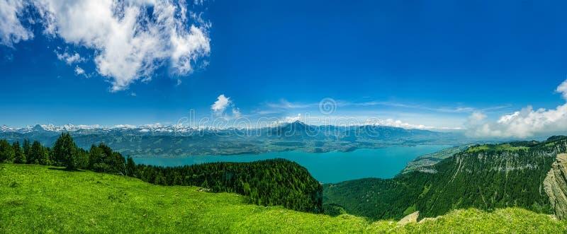 Panorama Jeziorni Thun i Bernese Alps wliczając Jungfrau, Niesen, Eiger i Monch szczytów z wierzchu Niederhorn w lecie, zdjęcie royalty free