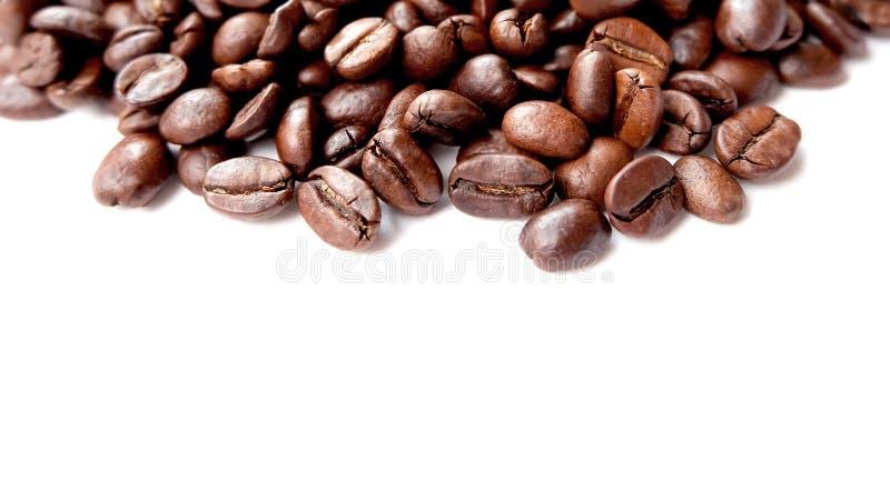 Panorama- kaffebönor för makro arkivbild