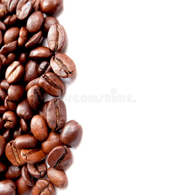 Panorama- kaffeb?nor f?r makro royaltyfria bilder