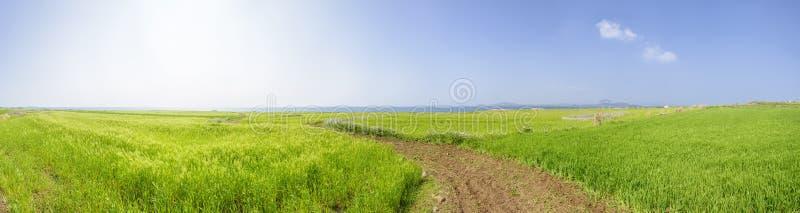 Download Panorama Krajobraz Gapado Wyspa Obraz Stock - Obraz złożonej z sezon, kolor: 53787389