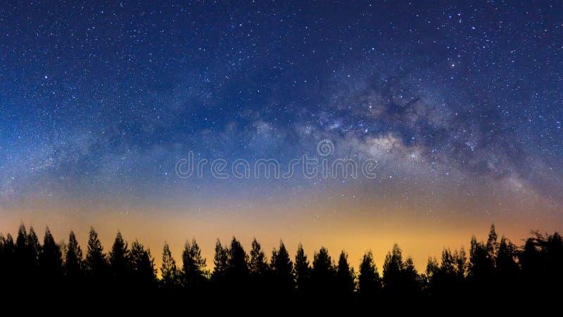 Panorama krajobraz z milky sposobem, nocne niebo z gwiazdami i silh, fotografia stock