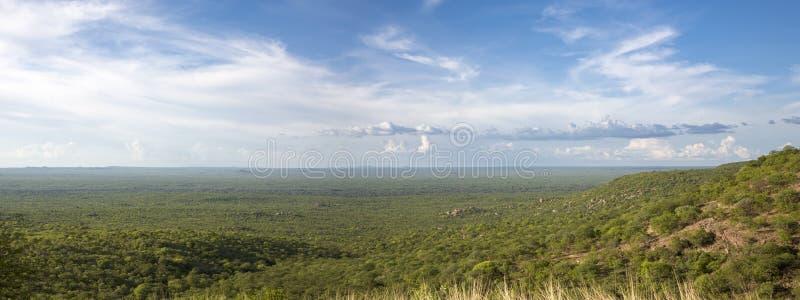 Panorama Kunene krajobraz z lasem, granica między Ang zdjęcia stock