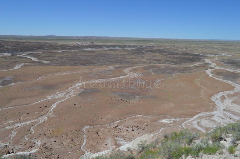 Panorama, l'antica riversa del pavone del deserto nazionale petrifatto fotografia stock