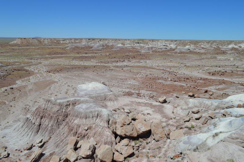 Panorama, l'antica riversa del pavone del deserto nazionale petrifatto fotografie stock