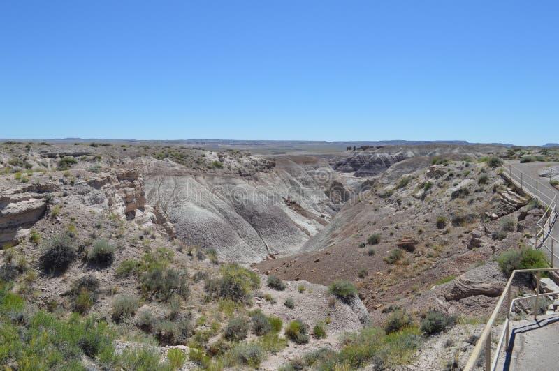 Panorama, l'antica riversa del pavone del deserto nazionale petrifatto fotografia stock libera da diritti