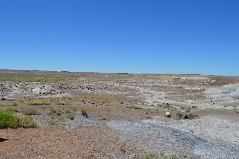 Panorama, l'antica riversa del pavone del deserto nazionale petrifatto immagine stock libera da diritti