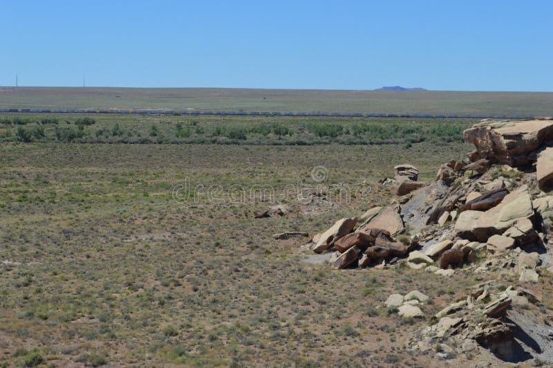 Panorama, l'antica riversa del pavone del deserto nazionale petrifatto immagine stock