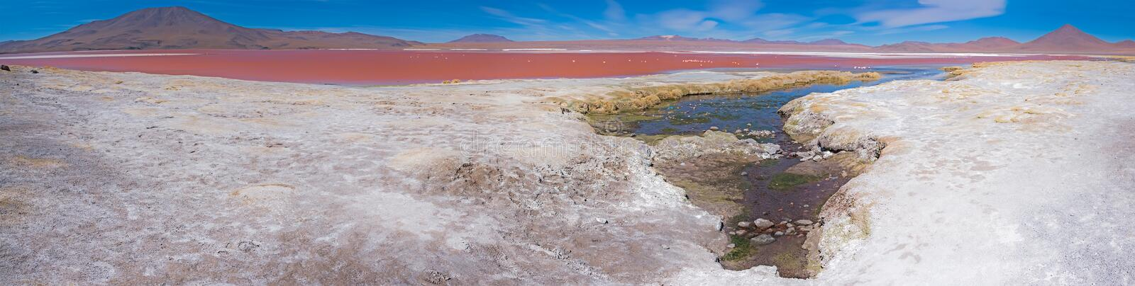 Panorama Laguna Colorada zdjęcia royalty free