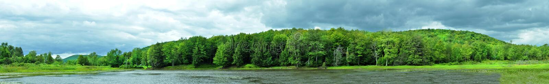 Panorama of a Lake royalty free stock image
