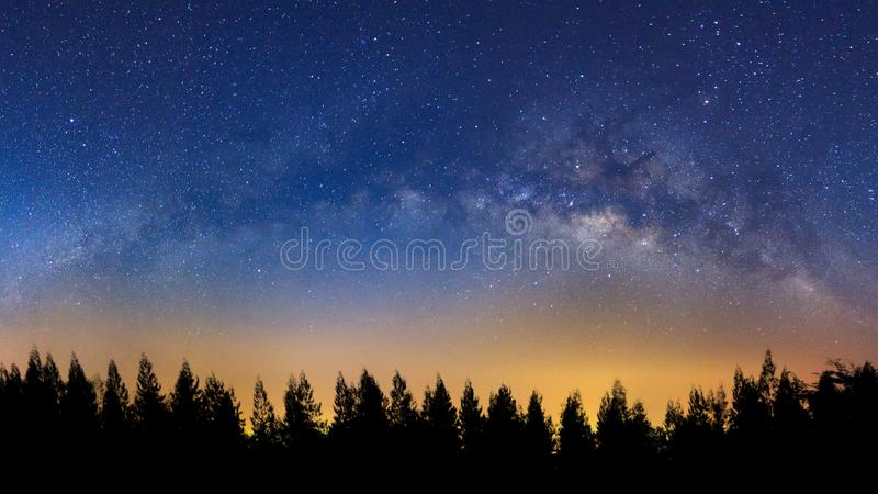 Panorama landscape with milky way, Night sky with stars and silhouette of pine tree stock photography