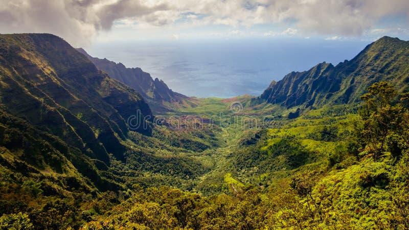 Panorama- landskapsikt av den Kalalau dalen och klippor för Na Pali royaltyfri foto