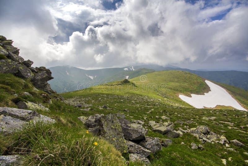 Panorama large d'allumer par le plateau de montagne du soleil avec l'herbe verte, p photo libre de droits