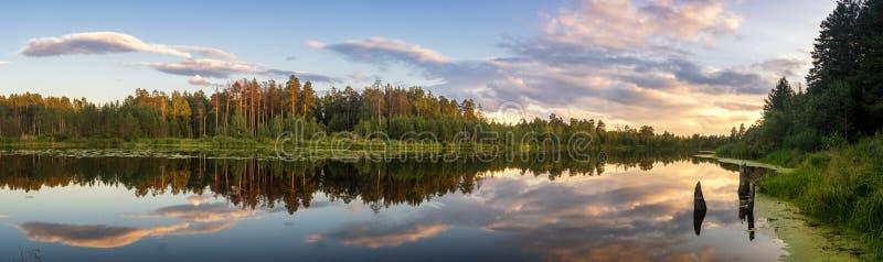 Panorama lato wieczór krajobraz na Ural jeziorze z sosnami na brzeg, Rosja, Sierpień fotografia stock