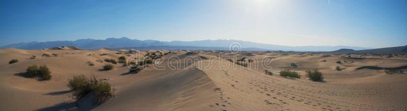Panorama liso das dunas de areia do Mesquite foto de stock