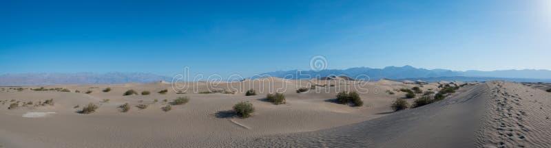 Panorama liso das dunas de areia do Mesquite fotografia de stock