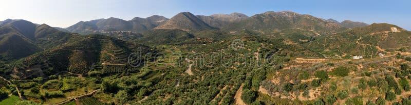 """Panorama lotnicza krajobrazu kretaÅ""""skiego z zagajnikami oliwnymi na stokach górskich. Kreta, Grecja zdjęcie stock"""