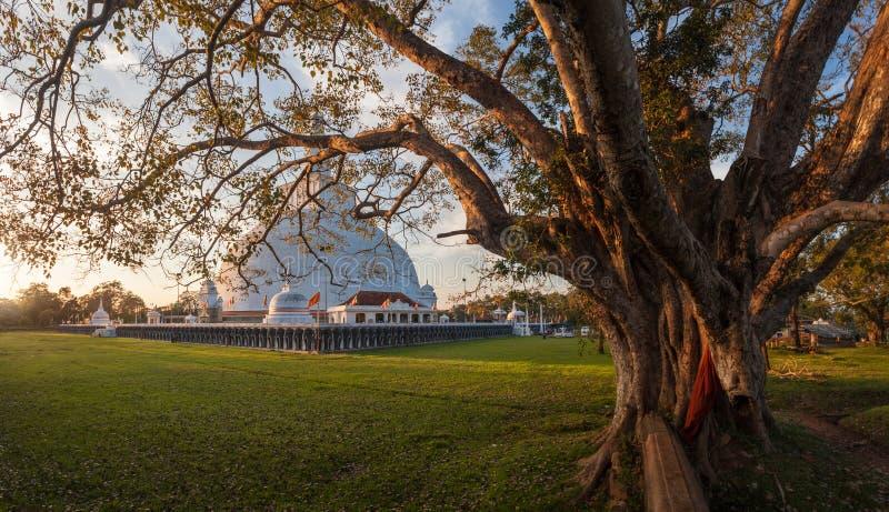 Panorama of Mahatupa or Ruwanweliseya big Dagoba in Anuradhapura, Unesco, Sri Lanka, Asia stock photo