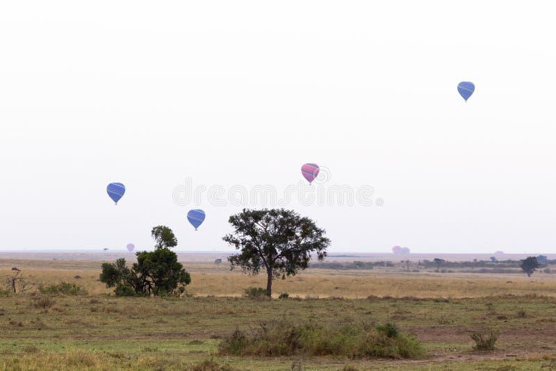 Panorama of Masai Mara in the morning. Balloons over the savanna. Kenya royalty free stock photos