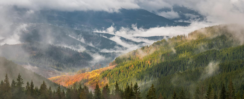 Download Panorama Med Skogen Och Moln Fotografering för Bildbyråer - Bild av dimma, härlig: 76700081
