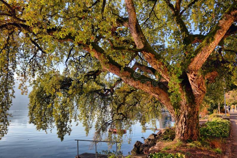 Panorama miasto na Lemańskim jeziorze, Szwajcaria zdjęcia stock