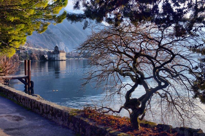 Panorama miasto na Lemańskim jeziorze, Szwajcaria fotografia royalty free