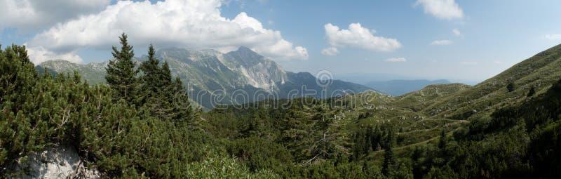 Panorama mit Krn-Berg vom Abhang von Krasji-vrh in Julian Alps in Slowenien stockfotografie