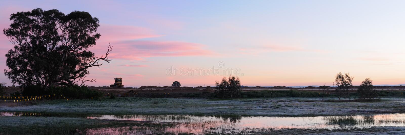 Panorama mit Planierraupe lizenzfreies stockbild