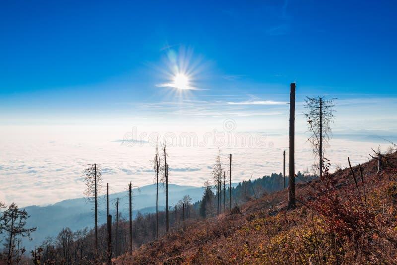Panorama mit Wolken und niedrigem Nebel gegen die Sonne, gesehen vom Campo-dei Fiori von Varese, Italien lizenzfreie stockfotografie