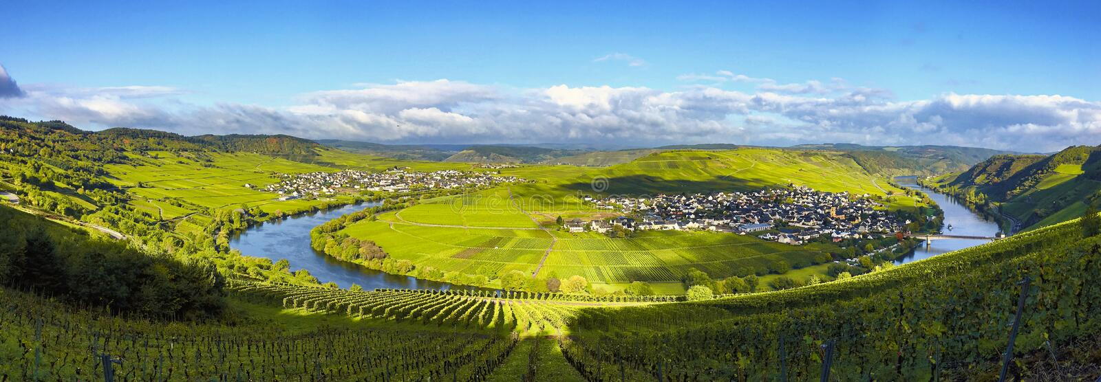 Panorama of the Moselle at Trittenheim stock photography