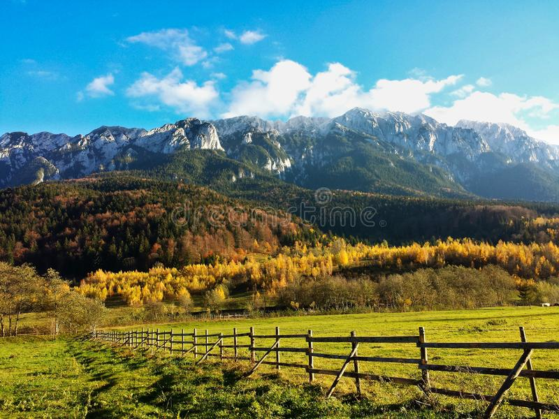 Panorama mountain landscape - autumn. With Bucegi mountain in background royalty free stock image