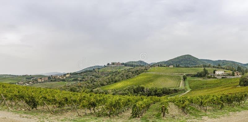 Panorama nad wzgórzami z winnicami i grodowy Brolio w Tusc zdjęcie royalty free