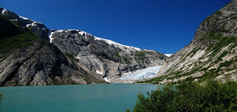 Panorama on Nigardsbreen glacier. Norway royalty free stock images