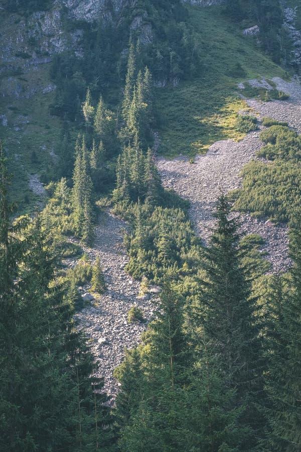 panorama occidental de montagne carpathienne dans le temps clair - retr de cru images stock