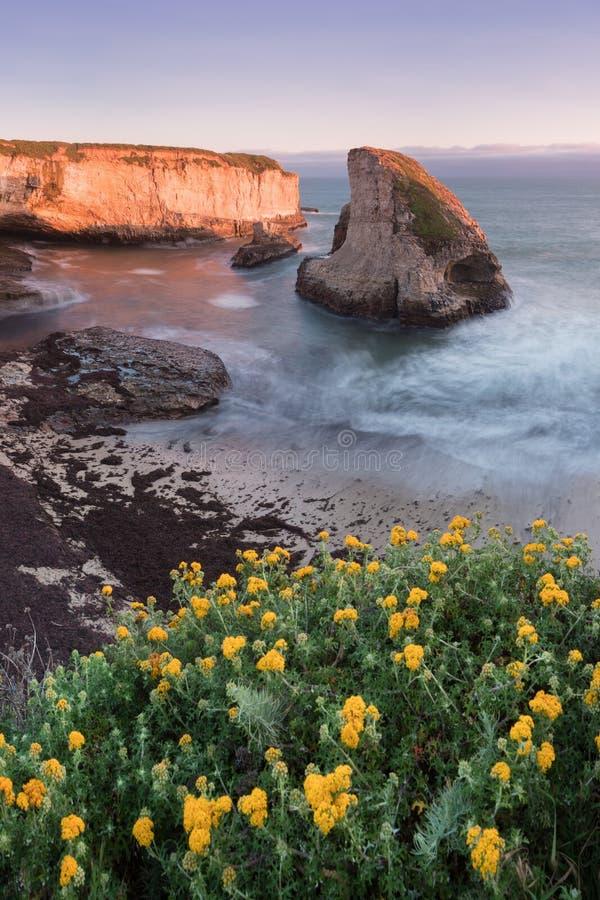 Panorama over van de de Inhamhaai van de Haaivin de Tandstrand Davenport, Santa Cruz County, Californië, de V.S. Zonsondergang in stock afbeelding