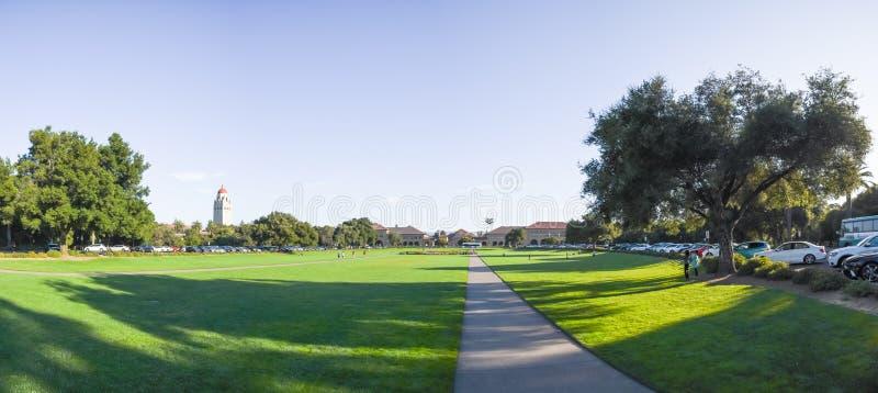 Panorama owalu zieleni gazon w kampusie uniwersytet stanforda zdjęcie stock