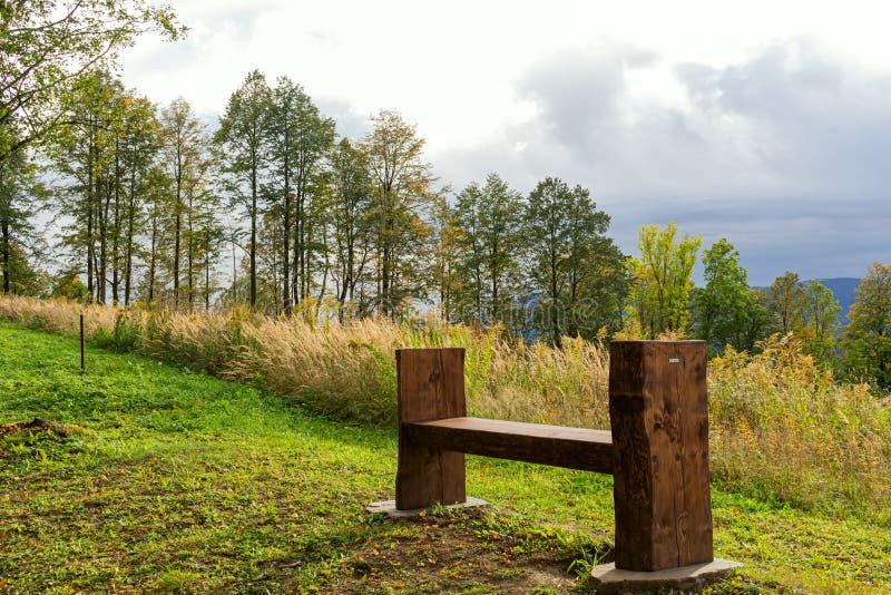 Panorama panoramique en journée ensoleillée avec vue sur les montagnes, la forêt verdoyante, le pré, le ciel bleu et les nuages b image libre de droits