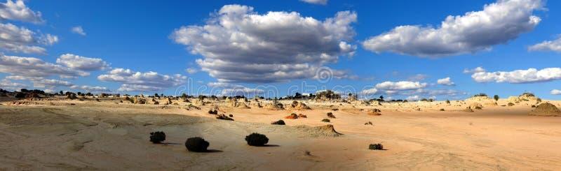 Panorama - parco nazionale del mungo, NSW, Australia immagini stock libere da diritti