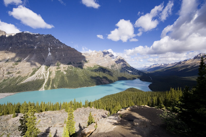 panorama peyto jezioro fotografia royalty free
