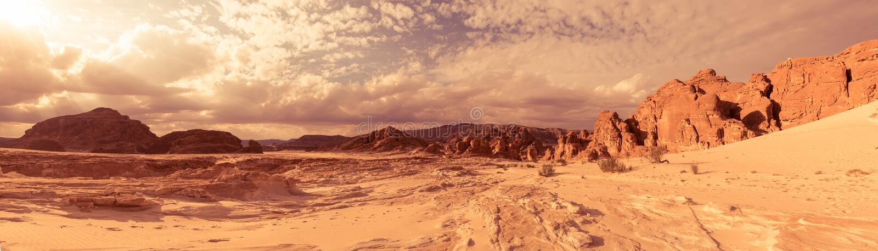 Panorama piaska pustynia Synaj, Egipt, Afryka zdjęcie royalty free
