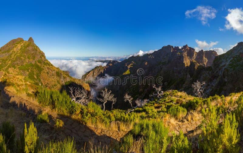 Panorama - Pico Ruivo and Pico do Arierio - Madeira Portugal royalty free stock photo