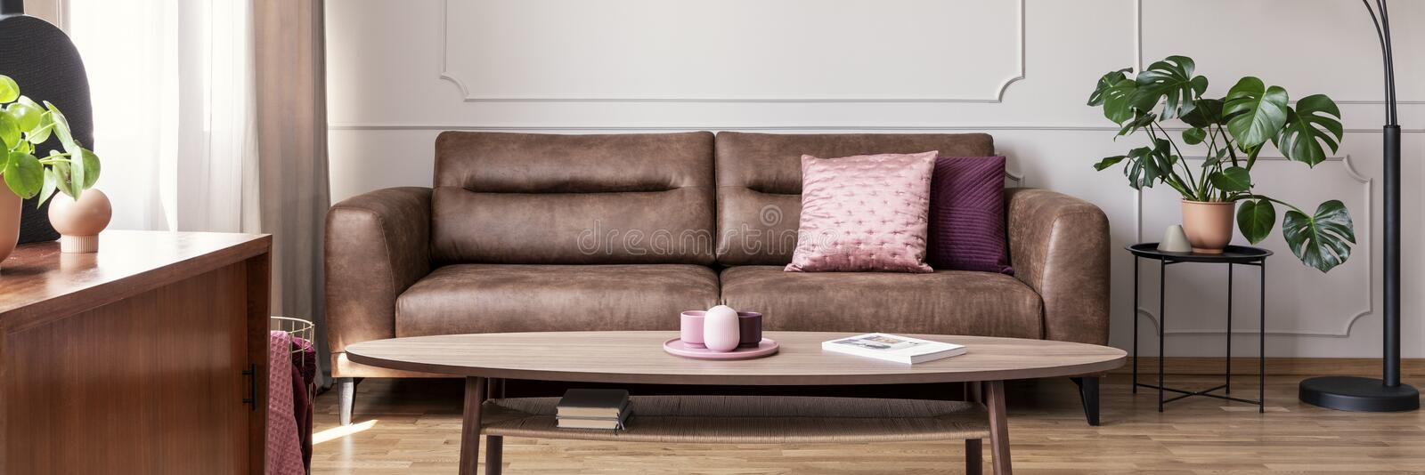 Panorama of pink pillow on leather sofa in living room interior with plant and wooden table. Real photo. Concept stock image