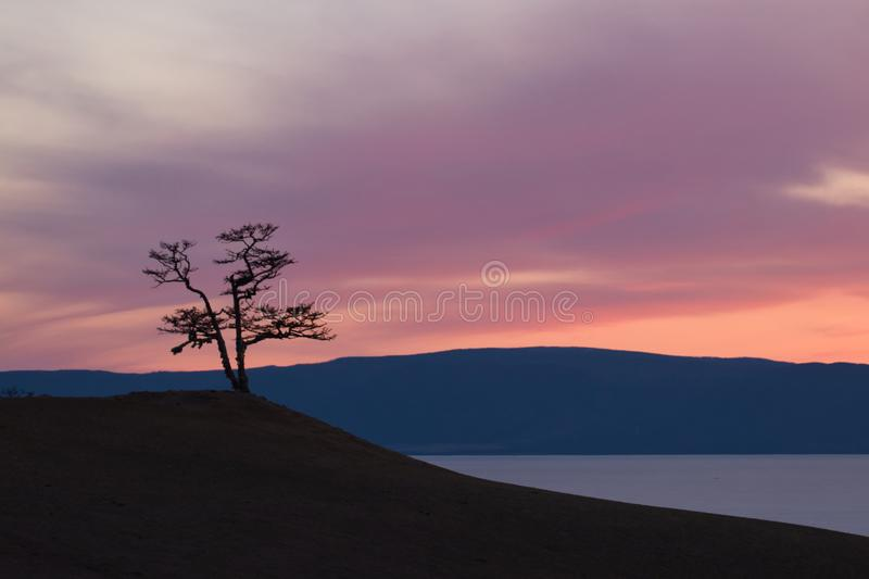 Panorama pink sunset,misty hills mountain tops in pink dawn stock image