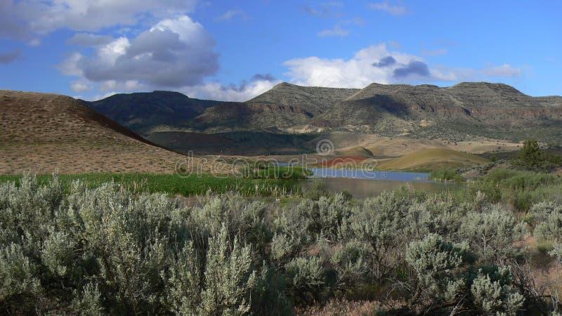 Panorama pintado dos montes imagens de stock royalty free