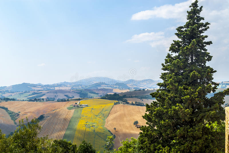 Download Panorama From Piticchio (Ancona) Stock Photo - Image of farm, summer: 28774728