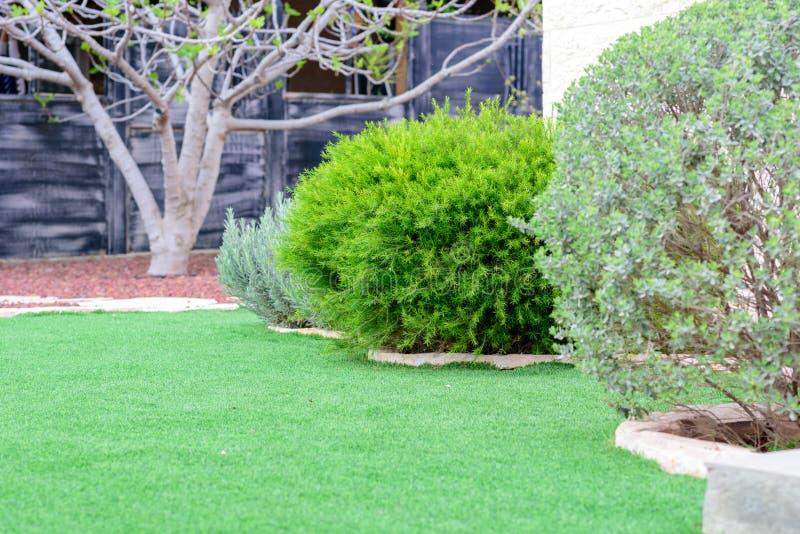 Panorama que ajardina natural en jard?n Hermosa vista del jard?n ajardinado en patio trasero fotos de archivo
