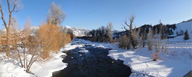 Panorama, río de Yampa y cottonwoods en invierno imágenes de archivo libres de regalías