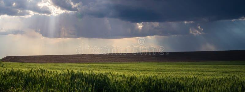 Panorama 2 : rayons d'un dieu au-dessus du Palouse images libres de droits