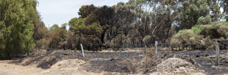Panorama recente bushfire langs estuarium stock foto's