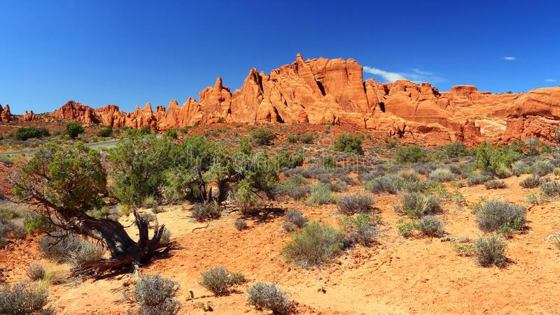 Panorama Rockowi żebra w diabła ogródzie, łuku park narodowy obrazy royalty free